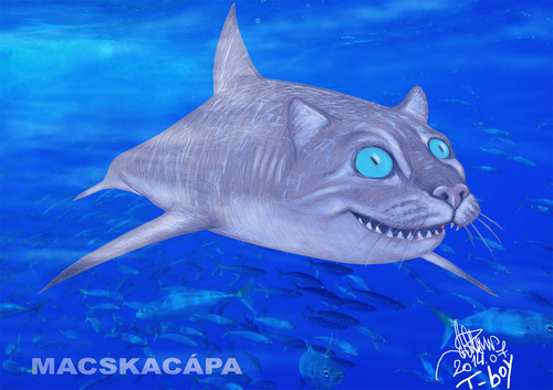 Cartoon: Scyliorhinus retifer (medium) by T-BOY tagged scyliorhinus,retifer