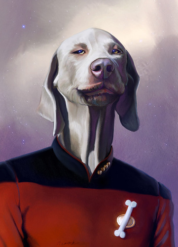 Cartoon: Jean Luc Picard (medium) by fantasio tagged picard,captain,star,trek,dog,portrait