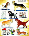 Cartoon: Hunde (small) by Pohlenz tagged hunde