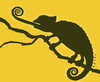 Cartoon: chameleon (small) by alexfalcocartoons tagged chameleon