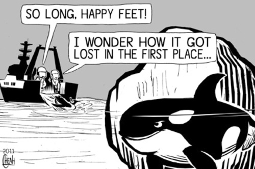 happy feet  cartoon