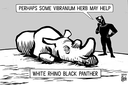 Cartoon: White rhino black panther (medium) by sinann tagged rhino,white,black,pnather,vibranium,herb,last