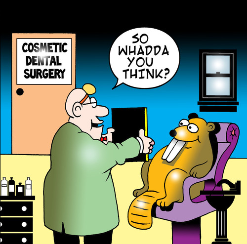 Cartoon: cosmetic dental surgery (medium) by toons tagged dentist,cosmetic,surgery,beaver,surgeon,doctor,implants,collegen,plastic,false,teeth,capped,buck,botox