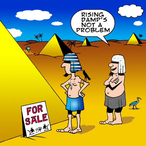 Cartoon: Rising damp (medium) by toons tagged pyramids,egypt,pharohs,desert,rising,damp,cemetary,egyptians,plumbing,house,sales,building,real,estate