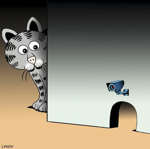 Surveillance Camera By Toons Nature Cartoon Toonpool