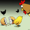 Cartoon: Counting doen the days (small) by toons tagged chicken,hatching,eggshells,chickens,farmyard,animals