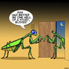 Cartoon: Praying mantis (small) by toons tagged infidelity,praying,mantis,insects