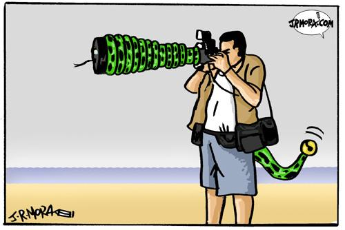 Cartoon: Paparazzi (medium) by jrmora tagged paparazzi,press,famous,