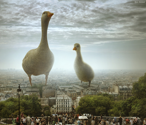 Cartoon: I Have Also Seen This in Paris (medium) by BenHeine tagged paris,france,montmartre,hill,people,crowd,foule,scary,funny,wallpaper,highres,poster,science,fiction,humor,scale,echelle,invasion,aliens,duck,bird,animal,photo,manipulation,light,lumiere,tourism,ben,heine,art,family,together,district,texture,canard,copyri