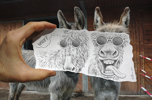 Cartoon: Pencil Vs Camera - 12 (medium) by BenHeine tagged pencil,vs,camera,traditional,digital,drawing,photography,donkey,ane,ben,heine,mad,crazy,hears,oreilles,sunglasses,tongue,couple,why,pourquoi,condition,happy,heureux,mise,en,abyme,conceptual,new,art,series,optical,illusion,2d,3d,sketch,nature,countryside,b
