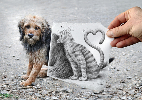 Cartoon: Pencil Vs Camera - 58 (medium) by BenHeine tagged pencil,vs,camera,art,ben,heine,drawing,photography,imagination,reality,surrealism,pencilvscamera,benheine,augmented,sketch,dog,cat,love,duo,friendship
