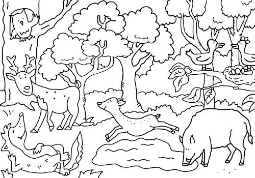 ausmalbild waldsabine voigt  nature cartoon  toonpool