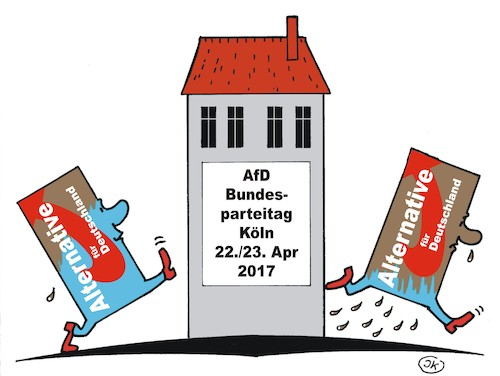 AfD Parteitag 1