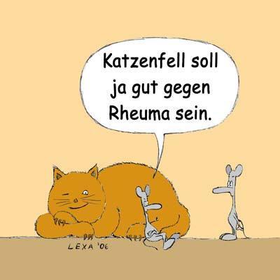 cartoons katzen: