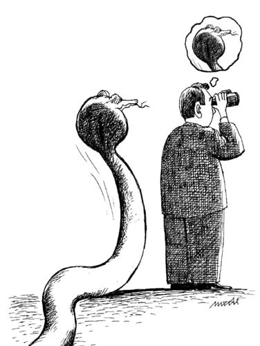 Cartoon: I do not see it (medium) by Medi Belortaja tagged binoculars,danger,snake