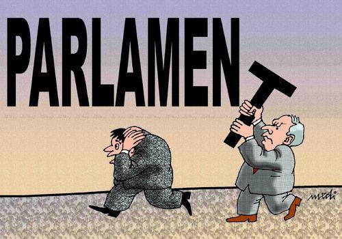Image result for Parliament cartoons