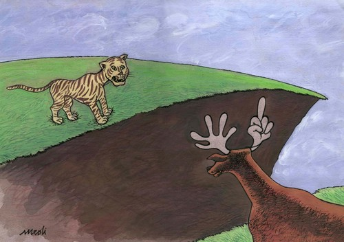 Cartoon: tiger and deer (medium) by Medi Belortaja tagged tiger,deer,hunger,hungry,animals