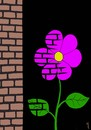Cartoon: flower near wall (small) by Medi Belortaja tagged flower,nature,wall,environment,bricks
