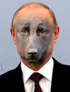 Cartoon: putin (small) by Medi Belortaja tagged putin