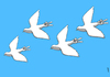 Cartoon: victory sky (small) by Medi Belortaja tagged victory sky pigeon colombo dove freedom