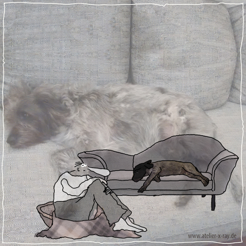 Cartoon: Hundekorb (medium) by kika tagged hund,mensch,sofa,hundekorb