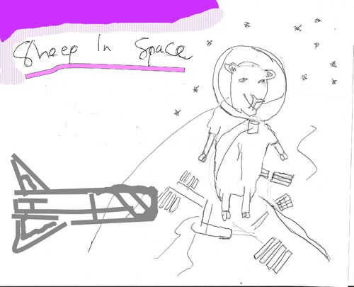 Cartoon: Sheep in Space (medium) by adamskidoodle tagged sheep,in,space