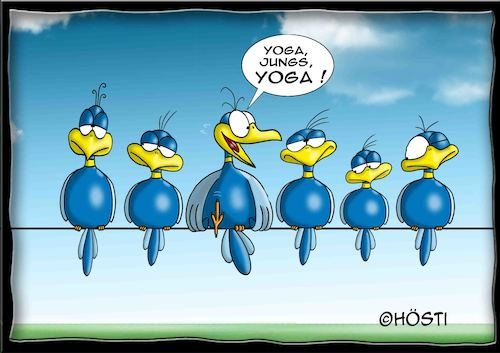 Cartoon: Höstis Batty Birds (medium) by Hösti tagged hösti,cartoons,hoesti,stephan,höstermann,batty,birds,vögel,blaue