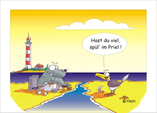 Cartoon: Möwe Emma und Konsorten (medium) by Hösti tagged möwe,emma,robbi,willi,spülen,priel,hösti,cartoons,küste,ostfriesland