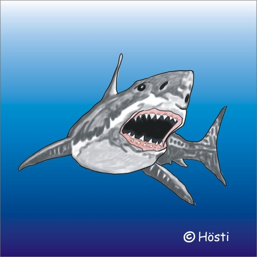 Cartoon: The Great White - save it (medium) by Hösti tagged great,white,shark,save,it,hösti,cartoons,digital,airbrush