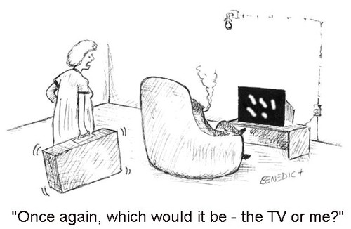 Cartoon: Choice (medium) by efbee1000 tagged choice,tv,television,domestic