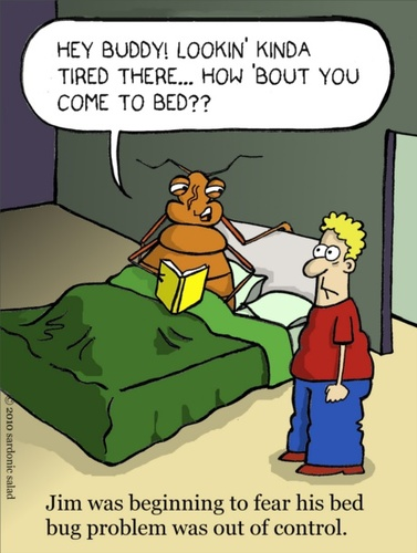 Bed Bug Quotes