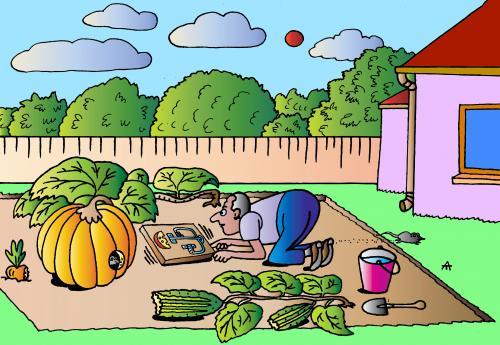 Cartoon Pics of Gardening Cartoon Garden And Trap