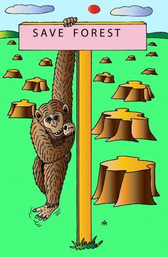 save forest by alexei talimonov politics cartoon toonpool