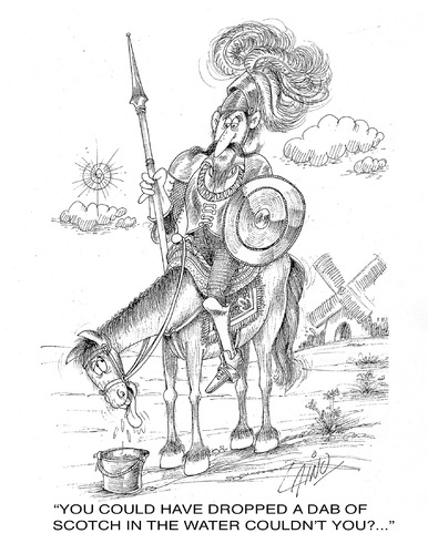 The concept of schizophrenia in the character of don quixote
