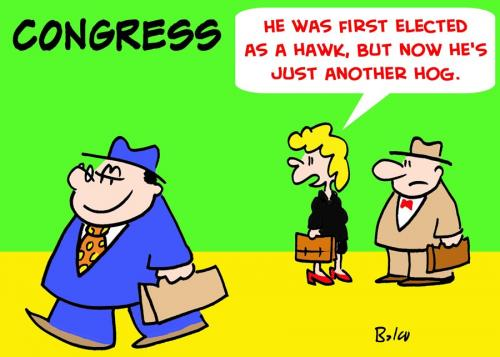 Cartoon: CONGRESS ELECTED HAWK HOG (medium) by rmay tagged congress,elected,hawk,hog