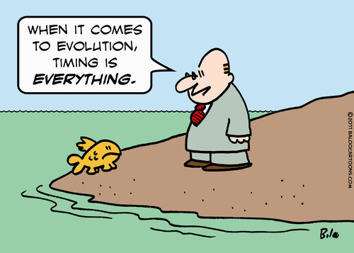 Evolution timing fish by rmay nature cartoon toonpool for Did humans evolve from fish