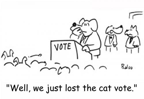 Cartoon: Lost the cat vote (medium) by rmay tagged cat,dog,vote,politics
